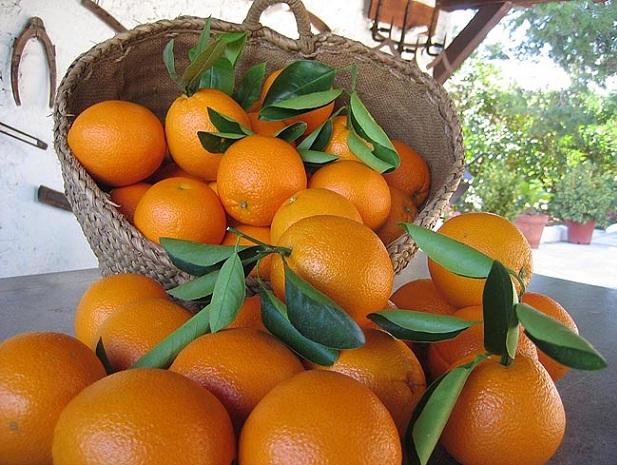 naranjas-3